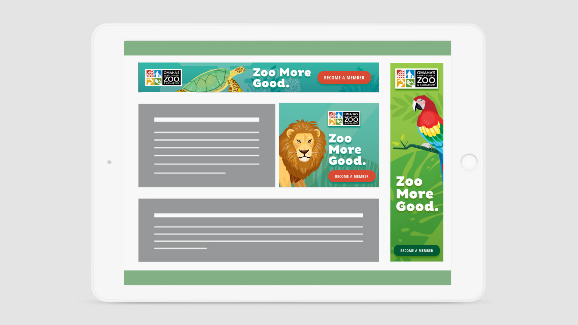 Zoo More Good Display Ads